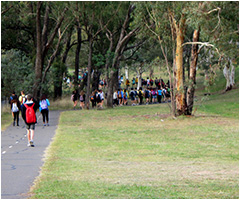 Students participating in the Walkathon to Yarrulumla Wool Shed