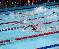 swimming carnival 2015